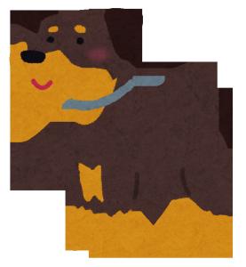 dog_rottweiler