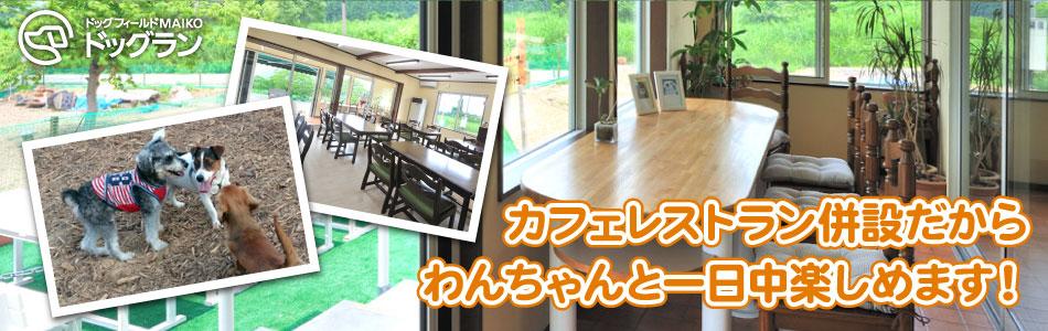 ドッグカフェ&レストラン丘の風